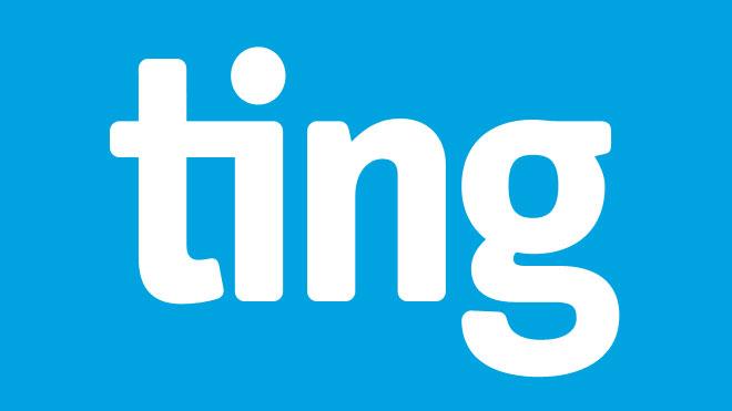 Ting Logo